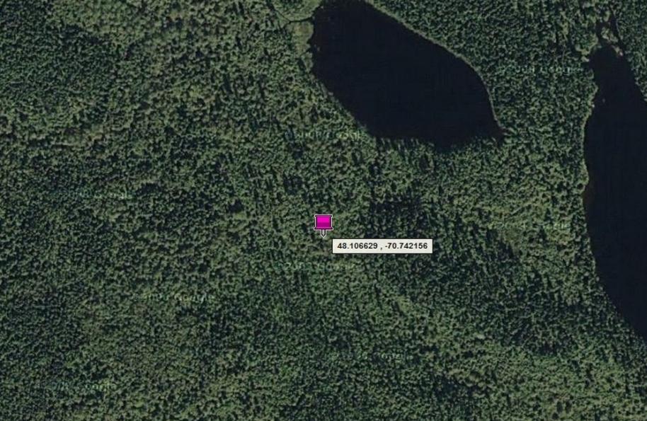 La parcelle de terrain unique et symbolique du Dr. Anthony Balavendrian est centrée sur le point GPS de latitude 48.106629 et de longitude -70.742156 au sein du Royaume de Nova Francia, sur le territoire non organisé de Lalemant, au Québec (Canada).